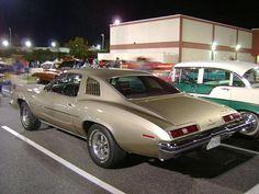 1973 pontiac gto in Ascot Silver Chevy Muscle Cars, Best Muscle Cars, American Muscle Cars, Pontiac Lemans, Pontiac Cars, Pontiac Bonneville, Cool Car Pictures, Car Pics, Hot Wheels