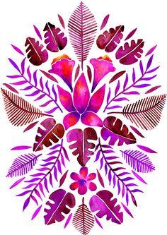 Tropical Symmetry – Magenta