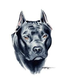 PIT BULL TERRIER Dog Art Print Signed by Artist DJ by k9artgallery   WATERCOLOR