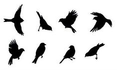 Garden Birds Wall Stencil - Reusable Bird Stencil for Walls, Crafts, Kids Rooms - Bird Stencils for DIY decor - Bird Stencils for Painting Butterfly Stencil, Bird Stencil, Stencil Wall Art, Stencil Painting, Stenciling, Stencil Patterns, Stencil Designs, Bird Silhouette, Unique Wall Decor
