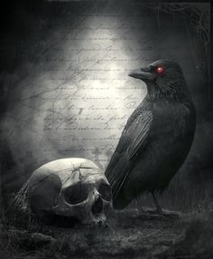 Raven-and-the-skull by ChristinaIsabella on DeviantArt