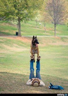 Mit dem Hund trainieren...