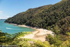 Meine 5 Highlights nach 5 Wochen Neuseeland