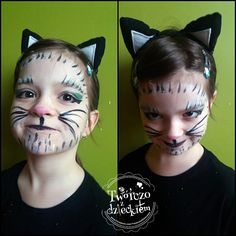 kot, cat