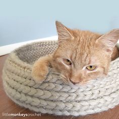 """The pattern for this shabby-chic bed came about when our family was recently adopted by a little orange stray tabby. It's a simple pattern, but uses an interesting technique to ensure that the """"right side"""" is on the inside bottom of the bed, but switches to the outside walls, while still remaining a seamless pattern. Give it a try, and give your favorite kitty a cozy place to take his naps!"""