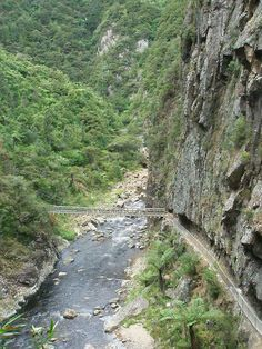 Karangahake Gorge, Waihi, New Zealand. a lovely drive on a sunny day, awesome in full flood!