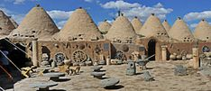beehive-houses-harran-urfa -History in Mesopotamia began and was written at Harran, the lands that produced Mesopotamia's learned men and bequeathed them to humanity. While hundreds of places around the world were groping their way in the darkness of ignorance, Harran was a beacon of wisdom enlightening mankind.