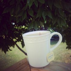 Tea under the tree