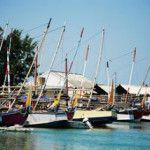 Nelayan Karimun Laporkan Dugaan Penyalahgunaan Wewenang Pertanahan Law And Justice, Sailing Ships, November, Boat, Boats