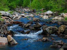 Otter Creek runs through Baxter's Hollow, a state natural