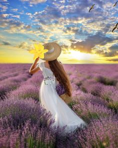 💟Fields of Lavender💛 Good Noon Images, Love You Images, Beautiful Fantasy Art, Beautiful Gif, Beautiful Women Videos, Animated Love Images, Fairy Photography, Aesthetic Photography Nature, Beautiful Flowers Wallpapers