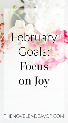 This month, I am pursuing joy! Find out my goals for the month and also how I persevered in my goals for January. What is your February focus? - The Novel Endeavor