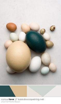 Colour Love // 69 - teal, green, neutral, brown, beige, white, grey, gray, blue, duck egg, egg, emu, easter, bird,
