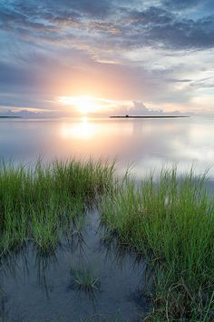 Pamlico Sound sunset, Outer Banks, North Carolina
