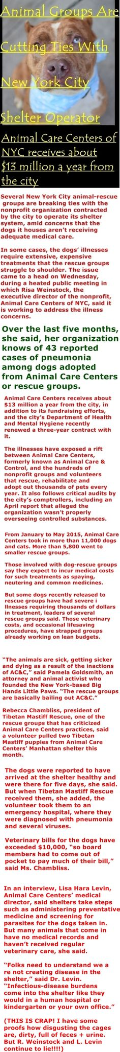 written by Melanie Grayce West for THE WALL STREET JOURNAL http://www.wsj.com/articles/animal-groups-are-cutting-ties-with-new-york-city-shelter-operator-1435192568