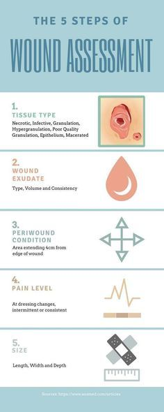 Ausmed's Wound Care and Wound Healing Guide for Nurses Infographic Wound Assessment peds nursing school, nursing medication administration, nursing schedule Nursing Degree, Nursing Career, Nursing Tips, Study Nursing, Nursing Scrubs, Funny Nursing, Nursing Schedule, Bsn Degree, Med School
