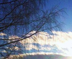 28. feb. 2012 / 17:00