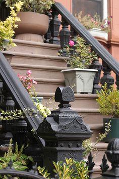 November in Stuyvesant Heights New York City, Brooklyn, November, World, Places, November Born, New York, The World, Nyc