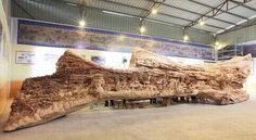 It took Chinese artist Zheng Chunhui 4 years to enter the Guinness Book of Records for the world's longest wooden carving.