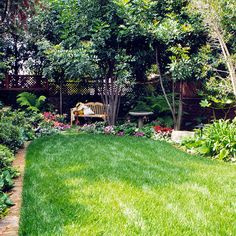 Keep your landscape looking great with this Lawn-Care Calendar for the Month Create a lush, green carpet in your landscape with our seasonal calendar of lawn-care tips for the South.