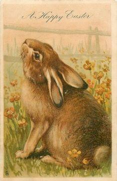 A Happy Easter ~ vintage postcard Easter Art, Hoppy Easter, Easter Crafts, Easter Bunny, Easter Decor, Easter Eggs, Easter Centerpiece, Bunny Crafts, Easter Table