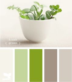 lime, pale green, celadon, taupes, warm taupe, pale taupe, brown taupe, cream