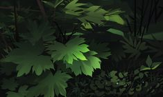 Interested in Drawing Animation Background, Environment Concept Art, Warrior Cats, Cute Illustration, Art Inspo, Art Reference, Cool Art, Plant Leaves, Sketches