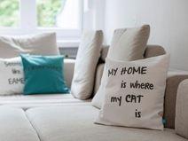 Kissen, Katze, Geschenk, kuschelig, Design,