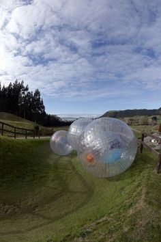 Zorbing in New Zealand. Have to do this.
