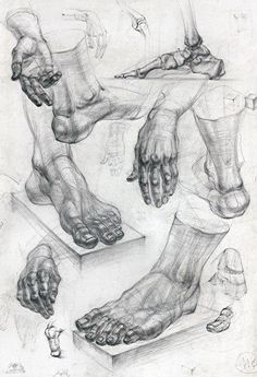 drawings of disney Feet Drawing, Body Drawing, Drawing Poses, Life Drawing, Painting & Drawing, Anatomy Sketches, Drawing Sketches, Drawings, Sketching