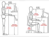 """Image Search Result for """"Workstation Ergonomics"""" Office Interior Design, Office Interiors, Human Dimension, Portable Desk, Wall Decor Design, Office Setup, Office Ideas, Woodworking Plans, Image Search"""