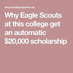 Scout Mom, Girl Scout Swap, Girl Scout Leader, Eagle Scout Project Ideas, Scout Quotes, Learning Place, Higher Learning, Cub Scouts Wolf, Eagle Scout Ceremony