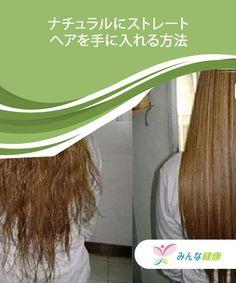 5 aloe vera behandlinger til at styrke dit hår — Bedre Livsstil Aloe Vera, Hair Styles, Beauty, Creme, Hair Makeup, Hairdos, Cosmetology, Hair Cuts, Hairstyles