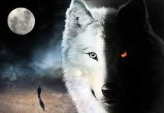 La leggenda dei due lupi - storia Cherokee