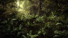 Redshift Forest - GPU Rendering Test 4, created by Greg Zdunek using Maya, SpeedTree, Nuke and Redshift.