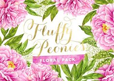 Fluffy Peonies - Watercolor Flowers - Illustrations
