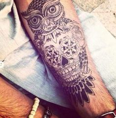 Skull and owl