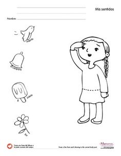 ... about sentidos on Pinterest | Worksheets, The five and My five senses