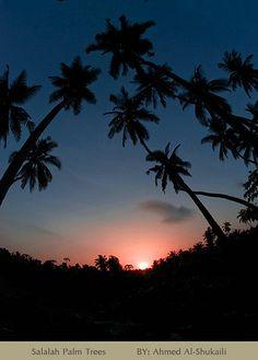 Sunset in Salalah, Oman | Flickr - Photo Sharing!