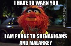 Be warned - prone to shenanigans & malarkey
