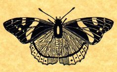 Red Admiral Butterfly Rubber Stamp by ButterSideDownStamps on Etsy, $7.95