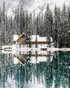 Upknorth: Canada In The Winter. A valid example. Lakeside Cabin In Emerald Lake, Bc. Shot By Stevint At Emerald Lake, Yoho National Park Beautiful Places, Beautiful Pictures, Beautiful Live, House Beautiful, Beautiful Women, Canadian Winter, Canadian Rockies, Canadian Christmas, Emerald Lake