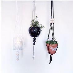 Plants Plant Hanger, Plants, Home Decor, Decoration Home, Room Decor, Plant, Home Interior Design, Planets, Home Decoration