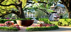 New Orleans Native Tours is the premier tour company in New Orleans. If you are looking to take a fun and exciting tour of New Orleans and really learn about the city's history then go to http://www.neworleansnativetours.com/