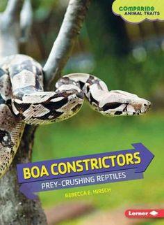 Boa Constrictors: Prey-Crushing Reptiles