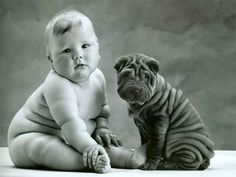 wrinkly babies and puppies
