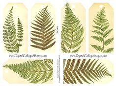 Vintage Botanical Fern Printed Tags from @etsy wedding seller Digital Collage Sheets