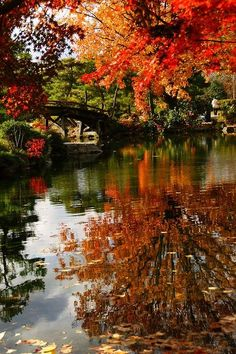 ✯ Fall Reflections share moments