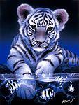 Мобильный LiveInternet Фантастический мир дикой природы. Картины японского художника Kentaro Nishino. | Akmaya - Записки Akmaya |