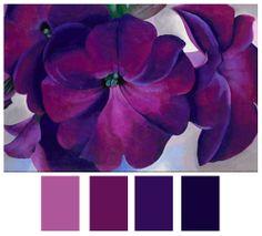 Petunia inspired colorway in a myriad of purple hues.